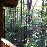 Foto di Mountain Creek Cabins