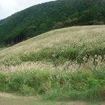 Sengokuhara Foto