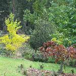 just a small area of gardens