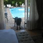 Blick durch Eingang zum Pool
