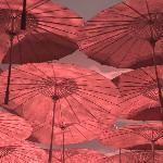 Umbrella room