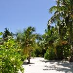 Barfußinsel