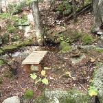 Meditation bench near brook