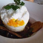 « Œuf de poule à  la  neige » en meurette  d'escargots  de  Bourgogne