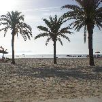 beach at alcudia