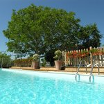 Private or shared heated fenced pools