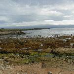 Tory Island, near the pier