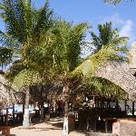 Photo of Casa Caracol