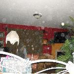 garden cottage orbs