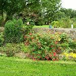 Amazing top garden