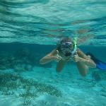Snorkeling in the Waters of Belize