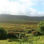 A peaceful landscape