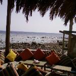 Foto Meya Meya