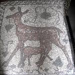 Mosaic in Entry
