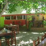 El Cafecito de la Cubana