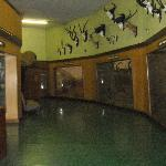 Natural History Museum-Bulawayo