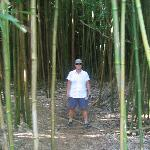 We also liked hiking in the bamboo forest