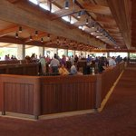 UnBridled Horse Tours - Yearling Sales at Keenland