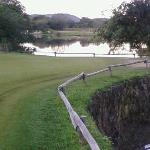 16th green. Hippo pool on right
