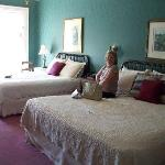 One of the lovely rooms