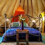 Apple Tree Yurt