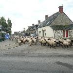 Photo of Auberge de la Baie