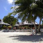 ..il nostro bungalow sulla spiaggia e accanto il ristorante