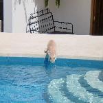 The resident cat at Villa Jazmin