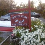 Lobster Pool front