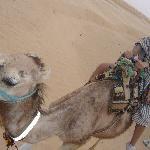 visit to Sahara