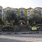 Olive Tree Studios