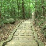 Granite trackway
