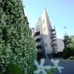 Residence le Corniole Aparthotel Foto