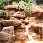waterfalls cafe