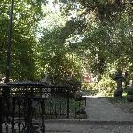 Blick in den Garten/Park 1