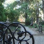 Blick in den Garten/Park 2