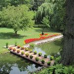 Schedel Gardens and Arboretum