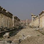 Cardo maximus, la via colonnata