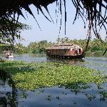 Photo of Malayalam Lake Resort Homestay