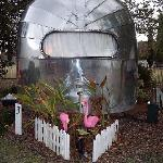 Cute Airstream and flamingos!