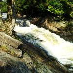 Oxtongue River Rapids, nearby