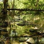 AHLA RIVER