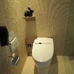 Japanese Toto Toilet