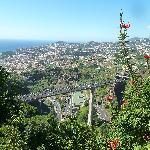 BLick auf die AUtobahn und Funchal