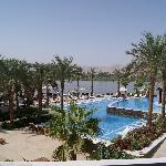 Pool looking over the Nile