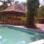Foto de Mandeville Hotel