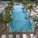 der wunderbare Pool