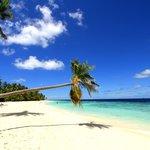 Filitheyo Island Resort - La Spiaggia