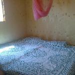bouncy bed