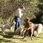 Gary & the dogs...
